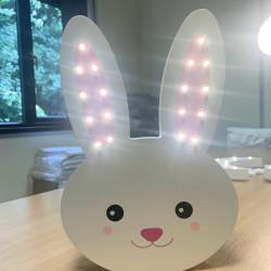 Light Up bunny