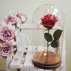 Image of Rose In Personalised Glass Dome