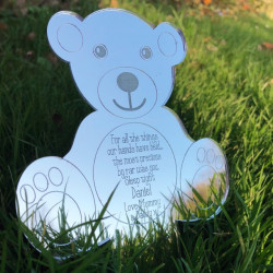 Image of mirrored teddy bear