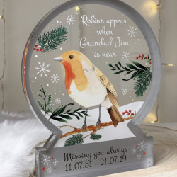 Personalised Robin Snowglobe Style Themed Ornament