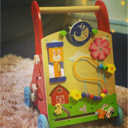 Personalised Activity Baby Walker